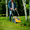 Покос травы на вашем участке #1620370